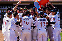 Wisconsin Timber Rattlers players celebrate a walk-off win during a Midwest League game against the Peoria Chiefs on April 22nd, 2017 at Fox Cities Stadium in Appleton, Wisconsin.  Wisconsin defeated Peoria 7-6. (Brad Krause/Krause Sports Photography)