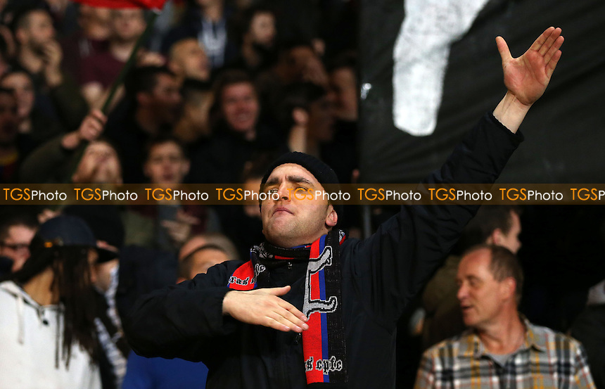 A Crystal Palace fan - Crystal Palace vs Fulham, Barclays Premier League at Selhurst Park, Crystal Palace - 21/10/13 - MANDATORY CREDIT: Rob Newell/TGSPHOTO - Self billing applies where appropriate - 0845 094 6026 - contact@tgsphoto.co.uk - NO UNPAID USE