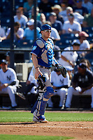 Toronto Blue Jays catcher Danny Jansen (9) during a Grapefruit League Spring Training game against the New York Yankees on February 25, 2019 at George M. Steinbrenner Field in Tampa, Florida.  Yankees defeated the Blue Jays 3-0.  (Mike Janes/Four Seam Images)