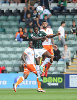 Blackpool's Curtis Tilt vies for possession with Plymouth Argyle's Freddie Ladapo<br /> <br /> Photographer Kevin Barnes/CameraSport<br /> <br /> The EFL Sky Bet League One - Plymouth Argyle v Blackpool - Saturday 15th September 2018 - Home Park - Plymouth<br /> <br /> World Copyright &copy; 2018 CameraSport. All rights reserved. 43 Linden Ave. Countesthorpe. Leicester. England. LE8 5PG - Tel: +44 (0) 116 277 4147 - admin@camerasport.com - www.camerasport.com