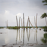 An area of land which used to be inhabited is gradually becoming more flooded due to rising sea levels. This destroys vegeation and kills plant and tree life.