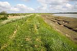 Pathway along flood defence sea wall bank, Butley Creek river, Suffolk, England, UK