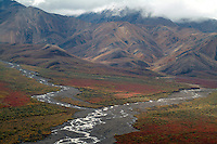 "Two ""braided"" rivers joining in Denali Park."
