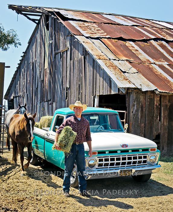 Jason feeding horses from his 1968 Ford Pickup Truck, San Luis Obispo, California