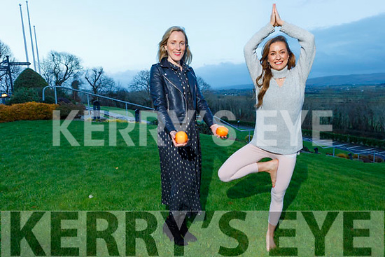 Fiona O'Neill holds her yoga pose with Aisling Fitzgibbon as Fiona is holding a class of yoga in the Ballyroe Heights Hotel on Sunday from 10am to 2pm for the Causeway Community Action Group's fundraiser to purchase the old Shannon Ballroom in the village.