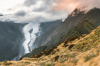 glacier valley | New Zealand