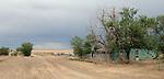 Facing west near the Colorado Kansas border