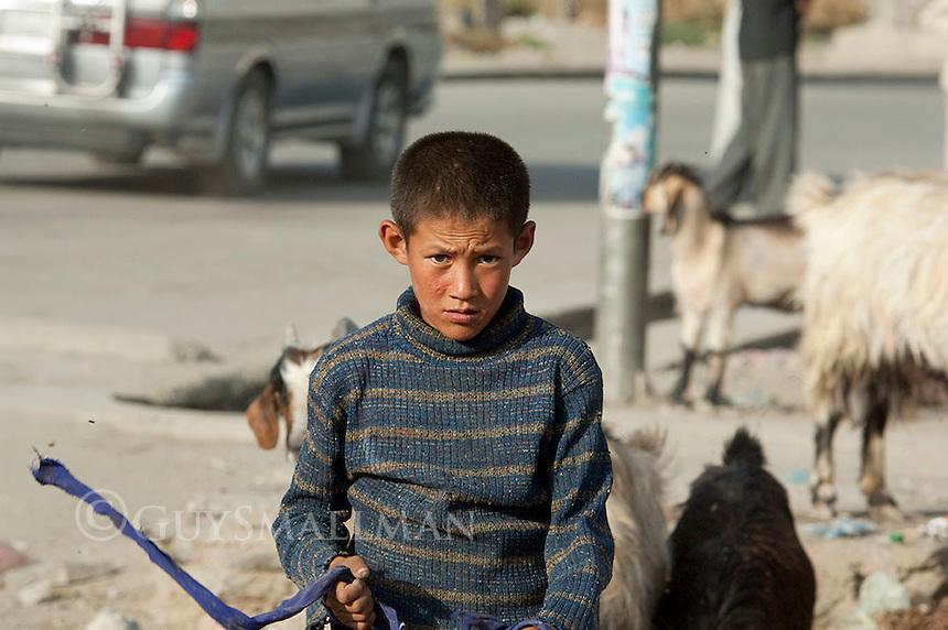 Boy goat herding in Kabul. 8-9-10
