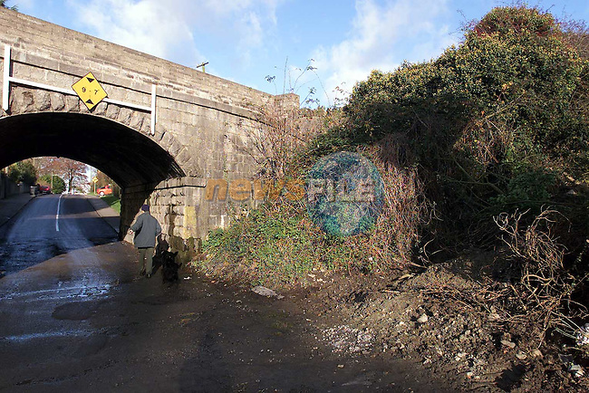 The railway bridge at Calvary Cemetery..Picture: Paul Mohan/Newsfile