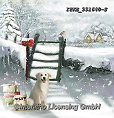Isabella, CHRISTMAS ANIMALS, WEIHNACHTEN TIERE, NAVIDAD ANIMALES, paintings+++++,ITKE551640-S,#xa#