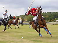 Italy. Tuscany. Polo Club Villa A Sesta is located near the village of Ripaltella and Pietraviva (Arezzo). Polo players riding horses while hitting ball during polo game. The game is between the teams Villa A Sesta ( white, leaded by Ricardo Tattoni) and Los Nocheros (red). Riccardo Tattoni is the owner of Polo Club Villa A Sesta. 17.09.10 © 2010 Didier Ruef