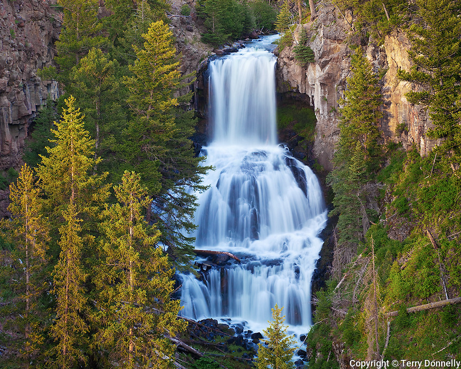 Yellowstone National Park, WY <br /> Afternoon sun on Undine falls (60ft) on Lava Creek