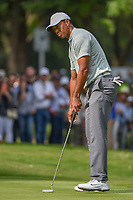 Tiger Woods (USA) watches his putt on 15 during round 3 of the World Golf Championships, Mexico, Club De Golf Chapultepec, Mexico City, Mexico. 2/23/2019.<br /> Picture: Golffile | Ken Murray<br /> <br /> <br /> All photo usage must carry mandatory copyright credit (© Golffile | Ken Murray)