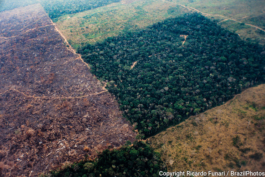 Aerial view of Amazon rainforest deforestation and farm management for livestock. Acre State, Brazil.
