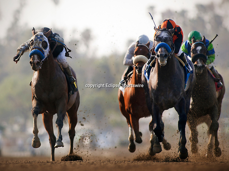 The Factor, with jockey Martin Garcia aboard wins the 2012 San Carlos Stakes at Santa Anita Park in Arcadia California on February 25, 2012.