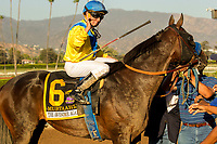 "ARCADIA, CA. SEPTEMBER 30: #6 Mubtaahij, ridden by Drayden Van Dyke, after winning the Awesome Again Stakes (Grade l) ""Win and You're In Classic Division"" on September 30, 2017 at Santa Anita Park in Arcadia, CA.(Photo by Casey Phillips/Eclipse Sportswire/Getty Images)"