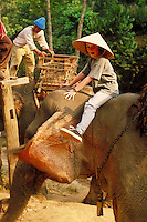 Excited young American girl rides on elephant in remote village in Thailand near Burma. Jungle. Thailand North of Chiang Mai near Burma.