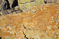 Parc National du Mercantour.  Bronze age rock carvings and designs, 2000 to 4000 years old,  on the slopes of Mont Bego in the Vallee des Merveilles,  Alpes-Maritimes, Provence, France.
