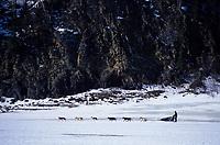 J.Hendricks on Yukon Between Anvik & Grayling<br /> Next to Rock River Bank