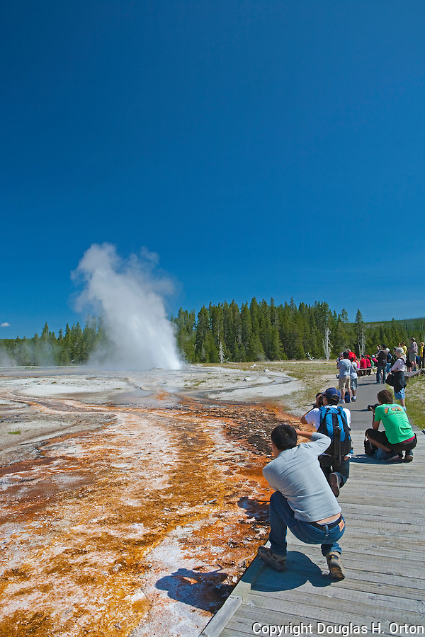Visitors photograph Daisy Geyser from the boardwalk.  While Old Faithful must be the most watched geyser in the park, other predicatable geysers make the crowds as interesting as the geyser.  Yellowstone National Park, the first National Park in the world, still enthrals over three million visitors a year with it's geothermal features,wildlife,  rugged mountains, deep canyons and stunning ecosystem.