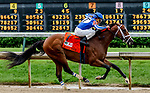 May 4, 2019 : #7 Mr. Money, ridden by jockey Gabriel Saez, wins the Pat Day Mile on Kentucky Derby Day at Churchill Downs on May 4, 2019 in Louisville, Kentucky. Mary Meek/Eclipse Sportswire/CSM