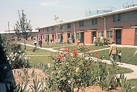1962 January..Assisted Housing..Young Terrace...CAPTION...NEG#.NRHA# 185..