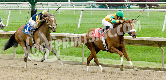 Gypsy Chimes winning at Delaware Park on 5/11/09