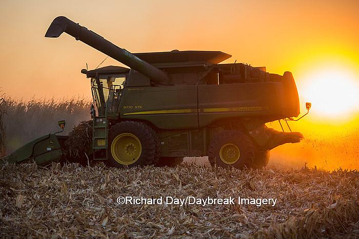 63801-06717 John Deere combine harvesting corn at sunset, Marion Co., IL