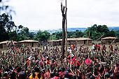 Lolgorian, Kenya. Siria Maasai Manyatta; mass of women with sticks prepared ready to build the 'magic house'.