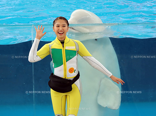 "April 26, 2017, Yokohama, Japan - Shiori Tamai, a member of Japanese girls only pop group ""Momoiro Clover Z"" (MCZ) performs with a white beluga at the aquarium of the Hakkeijima Sea Paradise in Yokohama, suburban Tokyo on Wednesday, April 26, 2017. The aquarium will start the new attraction with sea aninals featuring a MCZ's TV program for children from April 28.   (Photo by Yoshio Tsunoda/AFLO) LwX -ytd-"