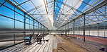Maximuck Farm - Bucks County - creating an energy efficent, solar powered green house for year-round production of vegatables.