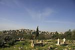 Israel, Lower Galilee, Cemetery of the Arab village Kaukab Abu el-Hija