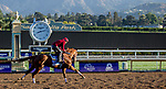 October 30, 2019: Breeders' Cup Filly & Mare Sprint entrant Selcourt, trained by John W. Sadler, exercises in preparation for the Breeders' Cup World Championships at Santa Anita Park in Arcadia, California on October 30, 2019. Carolyn Simancik/Eclipse Sportswire/Breeders' Cup/CSM