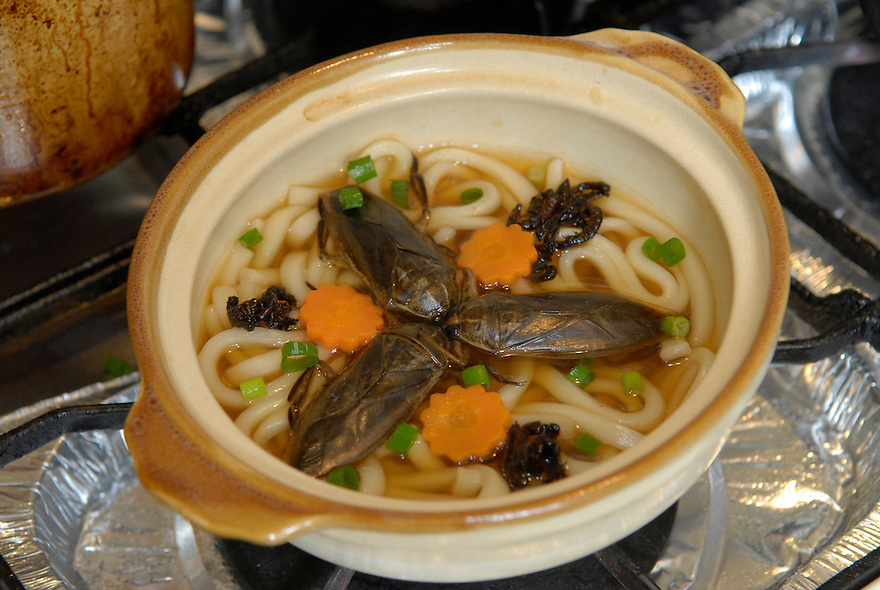"Taiwanese water bugs with Japanese udon noodles. Tokyo resident Shoichi Uchiyama is the author of ""Fun Insect Cooking"". His blog on the topic gets 400 hits a day. He believes insects could one day be the solution to food shortages, and that rearing bugs at home could dispel food safety worries."