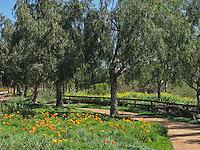 Nellie Gail Ranch Laguna Hills Walking Trail