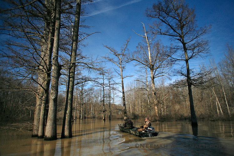 Brian and Ryan head out between cypress and oak on the Jackson Bayou in the Cache River NWR.