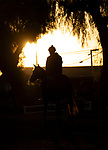 OCT 28: Scenes from Breeders Cup week at Santa Anita Park in Arcadia, California on Oct 28, 2019. Evers/Eclipse Sportswire/Breeders' Cup