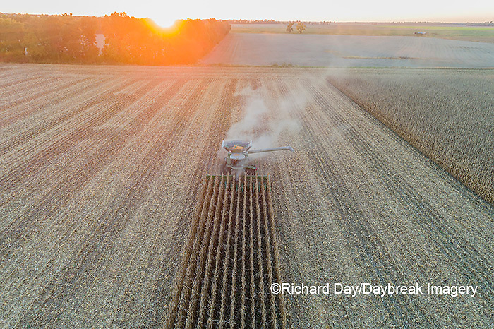 63801-13107 Harvesting corn in fall-aerial  Marion Co. IL