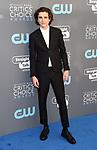 SANTA MONICA, CA - JANUARY 11: Actor Timothee Chalamet attends The 23rd Annual Critics' Choice Awards at Barker Hangar on January 11, 2018 in Santa Monica, California.