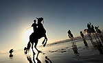 A Palestinian man rides his horse as he enjoy the last sunset of 2016 at the beach of Gaza city, on the December 31, 2016. Photo by Ashraf Amra