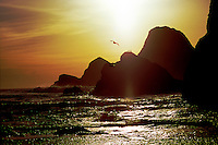 Sunset scene on Oregon Coast north of Oceanside near Three Arch Rocks with gulls and sea stacks.