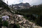 Thunder Lake, Pilot Mountain, Mount Alice, subalpine forest, columbine, talus, slope, Rocky Mountain National Park, Colorado, USA, Rocky Mountains