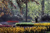Netherlands, Keukenhof Gardens, Beautiful tulips adorn the grounds of Keukenhof Gardens in Lisse.