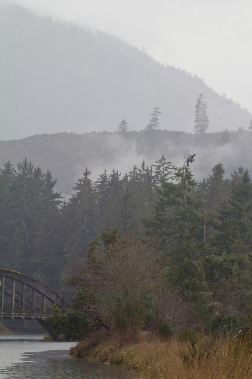Puget Sound, Hood Canal, Hamma Hamma River estuary, rain, winter, Olympic Mountains, Olympic Peninsula, Washington State, Pacific Northwest, USA,