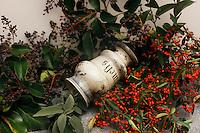 Erbe e spezie. Herbs and spices...