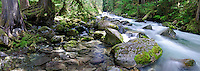 Panoramic view of rocky Newhalem Creek in North Cascades National Park, Washington State