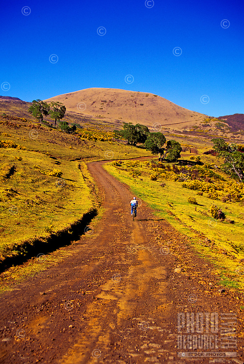 A mountain cyclist rides uphill on desolate Mana Road which winds up Mauna Kea on the Big Island of Hawaii.