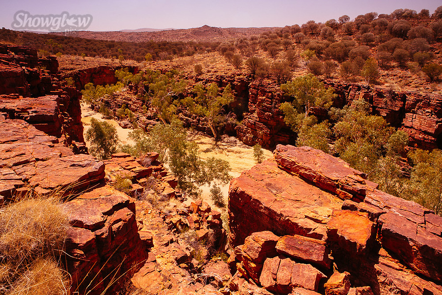 Image Ref: CA711<br />