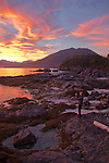 Vancouver Island, Stud Islets, Barkley Sound, Deer Group, British Columbia, Canada, sunset, sea kayak camping, wilderness coast,