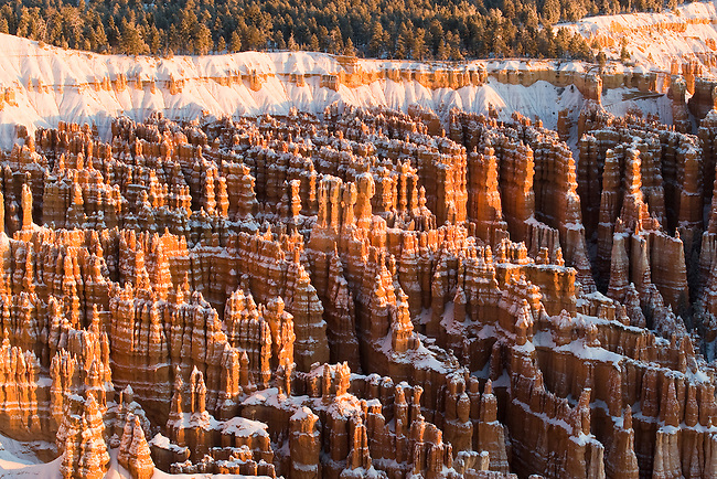Hoodoos, as seen from Inspiration Point in Bryce Canyon National Park, Utah, USA,  December 7, 2007.  Photo by Gus Curtis.